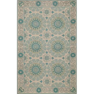 Roeser Aqua Area Rug Rug Size: Rectangle 8 x 10