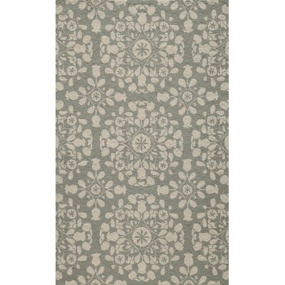 Roeser Gray Area Rug Rug Size: Rectangle 36 x 56