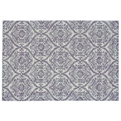 Gharass Gray Area Rug Rug Size: Rectangle 22 x 4