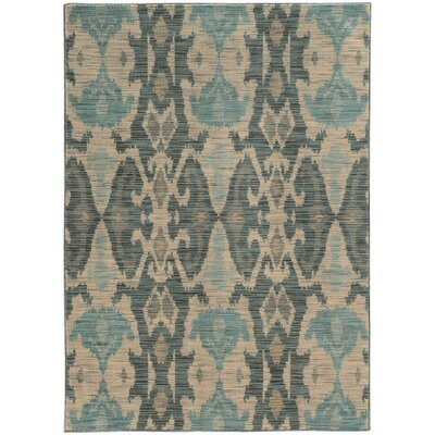 Aydan Ivory/Grey Area Rug Rug Size: Rectangle 53 x 76