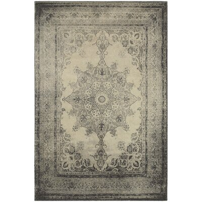 Blaine Ivory/Gray Area Rug Rug Size: Rectangle 53 x 76