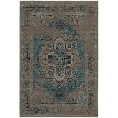 Raiden Grey/Teal Area Rug