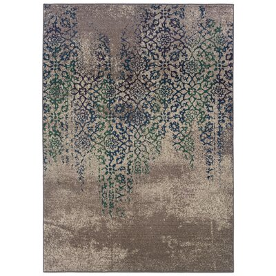 Terrell Grey/Blue Area Rug Rug Size: Rectangle 53 x 76