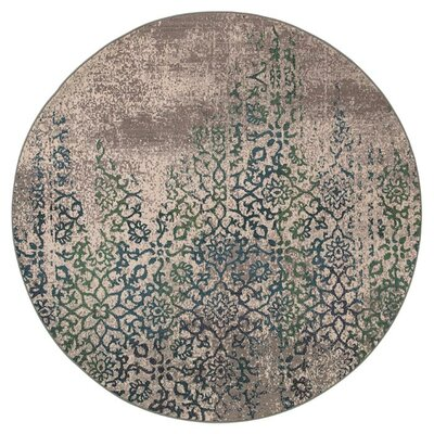 Terrell Grey/Blue Area Rug Rug Size: Round 7'10