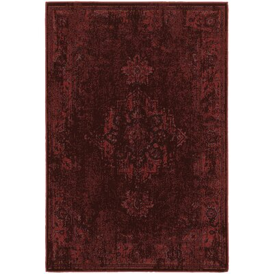 Raiden Overdyed Red Area Rug