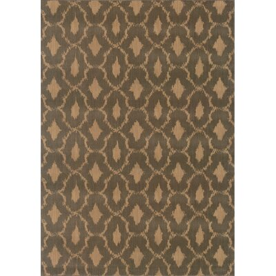 Sincere Brown/Green Area Rug Rug Size: Rectangle 53 x 76