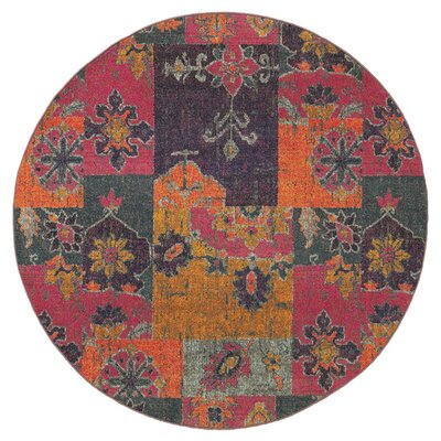Terrell Floral Ikat Multi/Pink Area Rug Rug Size: Round 710