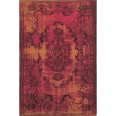 Raiden Pink/Orange Area Rug Rug Size: 53 x 76