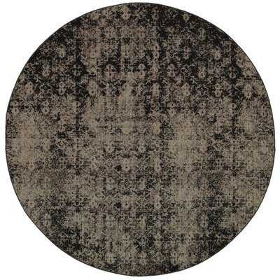 Raiden Gray/Black Area Rug Rug Size: Round 78