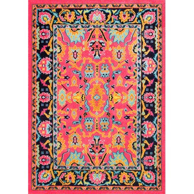 Quaria Pink Area Rug Rug Size: Rectangle 67 x 9