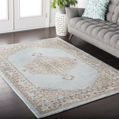 Kamil Blue / Brown Area Rug Rug Size: Runner 27 x 67