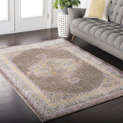 Fields Pink / Brown Area Rug Rug Size: Rectangle 53 x 76