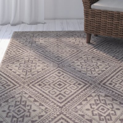 Puran Gray Area Rug Rug Size: Rectangle 710 x 910