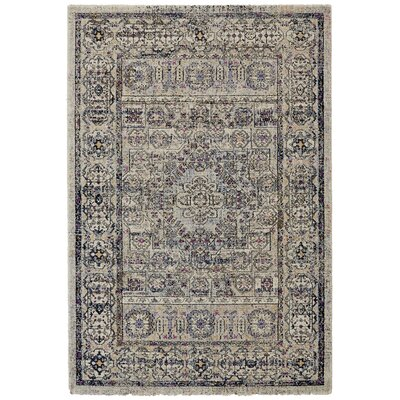 Nolan Vanilla/Ice Area Rug Rug Size: Rectangle 10 x 14