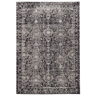 Diana Charcoal/Gray Area Rug Rug Size: Runner 21 x 71