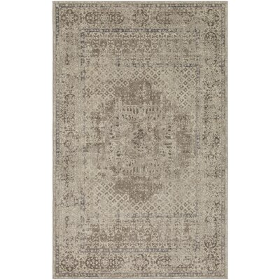 Somona Cream/Taupe Area Rug