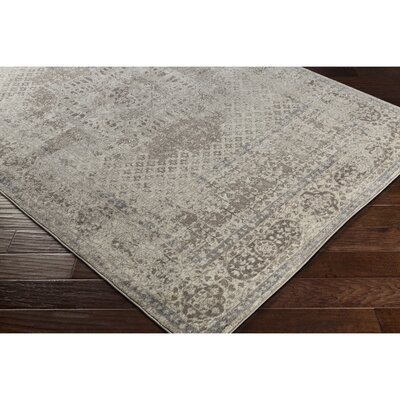 Ismael Taupe Area Rug Rug Size: Runner 27 x 77