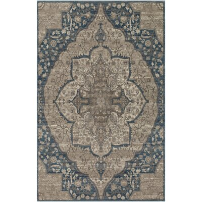 Ismael Floral Taupe/Aqua Area Rug Rug Size: Rectangle 2 x 3
