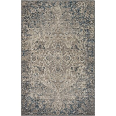 Ismael TaupeAqua Area Rug Rug Size: Rectangle 76 x 96