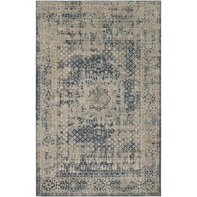 Ismael Navy/Cream Area Rug Rug Size: Rectangle 5 x 8