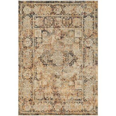 Gabrielle Black/Burnt Orange Area Rug Rug Size: 53 x 76