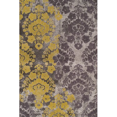 Wilton Gold/Grey Ikat Area Rug Rug Size: Rectangle 53 x 77