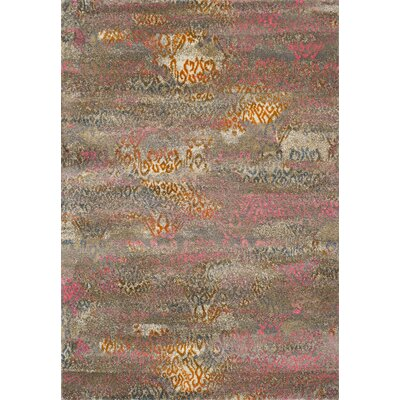 Homeland Multi Area Rug Rug Size: Rectangle 53 x 77
