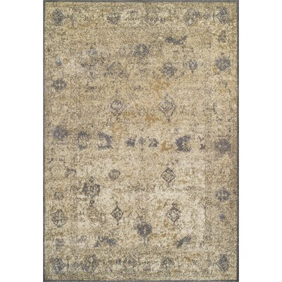 Forsythia Gray/Brown Area Rug Rug Size: 53 x 77