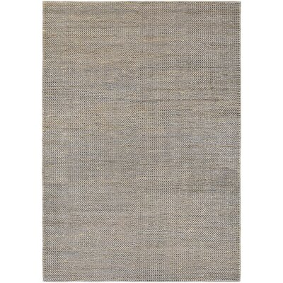 Uhlig Hand-Woven Gray/Tan Area Rug Rug Size: Rectangle 35 x 55
