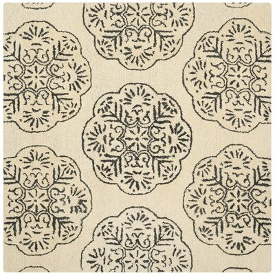 Rudra Ivory/Charcoal Area Rug Rug Size: Square 6