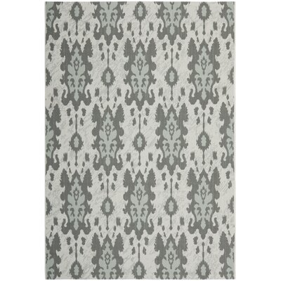 Amedee Light Grey Anthracite/Aqua Weft Outdoor Rug Rug Size: Runner 27 x 5