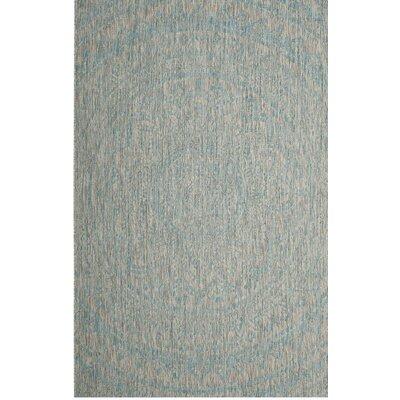 Amedee Light Gray/Aqua Indoor/Outdoor Area Rug Rug Size: 2' x 3'7