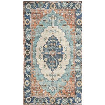 Amanda Hand-Loomed Blue/Coral Area Rug Rug Size: 3 x 5
