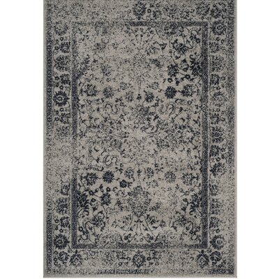 Norwell Gray/Navy Area Rug Rug Size: 4 x 6