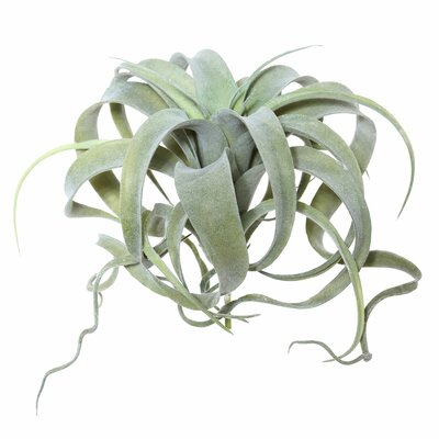 Artificial Tillandsia Pick Foliage Plant