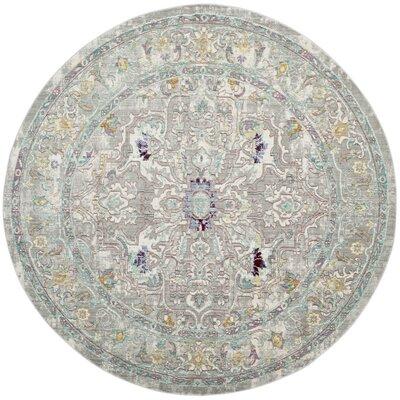 Shubhada Gray/Multi Area Rug Rug Size: Round 67