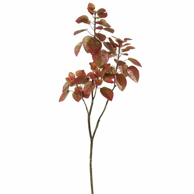 Artificial Cotinus Coggygria Folia Branch Leaves Color: Red