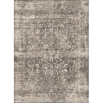 Josue Brown Area Rug Rug Size: 53 x 73