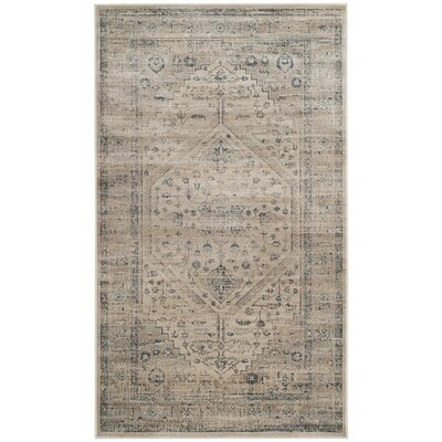 Lizotte Stone / Blue Area Rug Rug Size: Rectangle 67 x 92