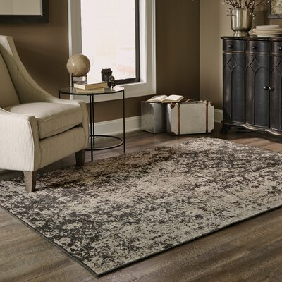 Raiden Gray/Black Area Rug Rug Size: Rectangle 910 x 1210