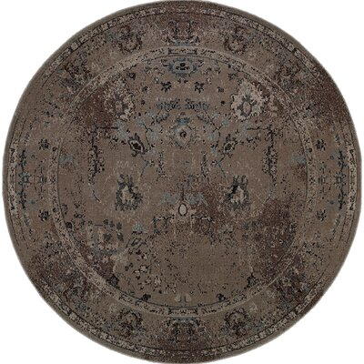 Raiden Grey/Teal Area Rug Rug Size: Rectangle 53 x 76