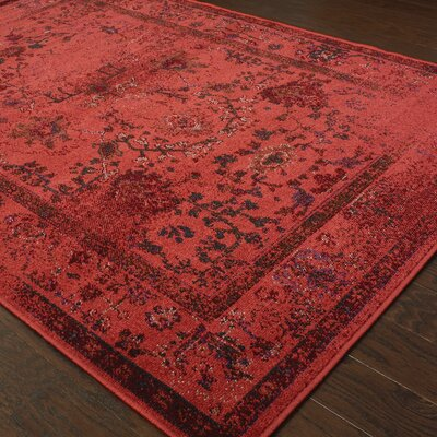 Raiden Red Area Rug Rug Size: 53 x 76