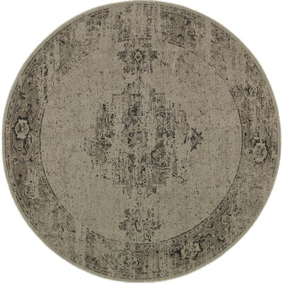 Raiden Gray/Charcoal Area Rug Size: 78 x 78