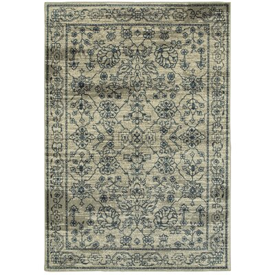 Fayanna Faded Traditions Beige/ Navy Area Rug Rug Size: 53 x 76