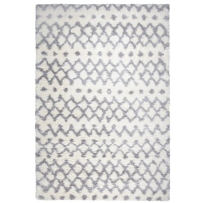 Matias Gray Shag Area Rug Rug Size: Rectangle 53 x 73