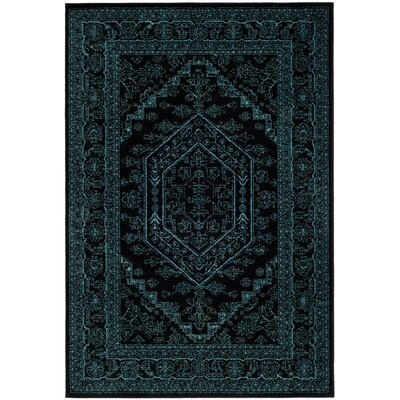 Norwell Black/Teal Area Rug Rug Size: Rectangle 6 x 9