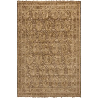 Kelton Beige/Olive Rug Rug Size: Rectangle 56 x 86
