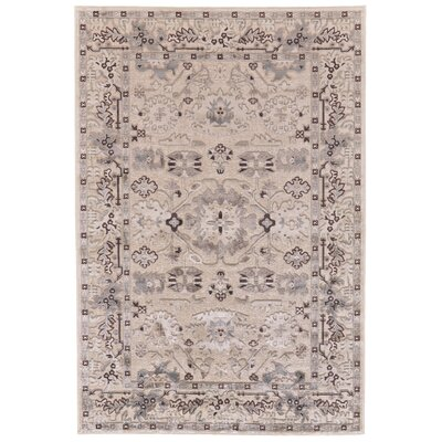 Vivienne Cream/Gray Area Rug Rug Size: Rectangle 53 x 76