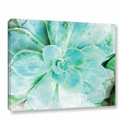 "'Teal Succulent 1' Print on Canvas Size: 18"" H x 24"" W x 2"" D BNRS3929 38026773"