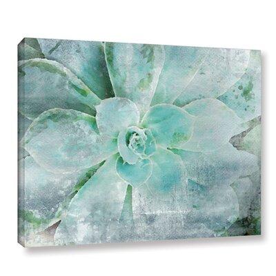 "'Teal Succulent 2' Print on Canvas Size: 18"" H x 24"" W x 2"" D BNRS3931 38026783"